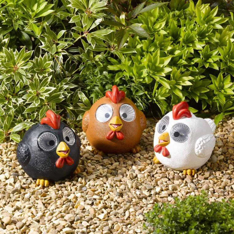 Win: Bright Eye Solar Happy Hens